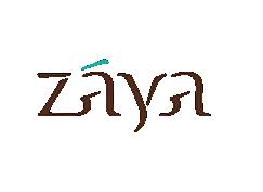 Zaya Development
