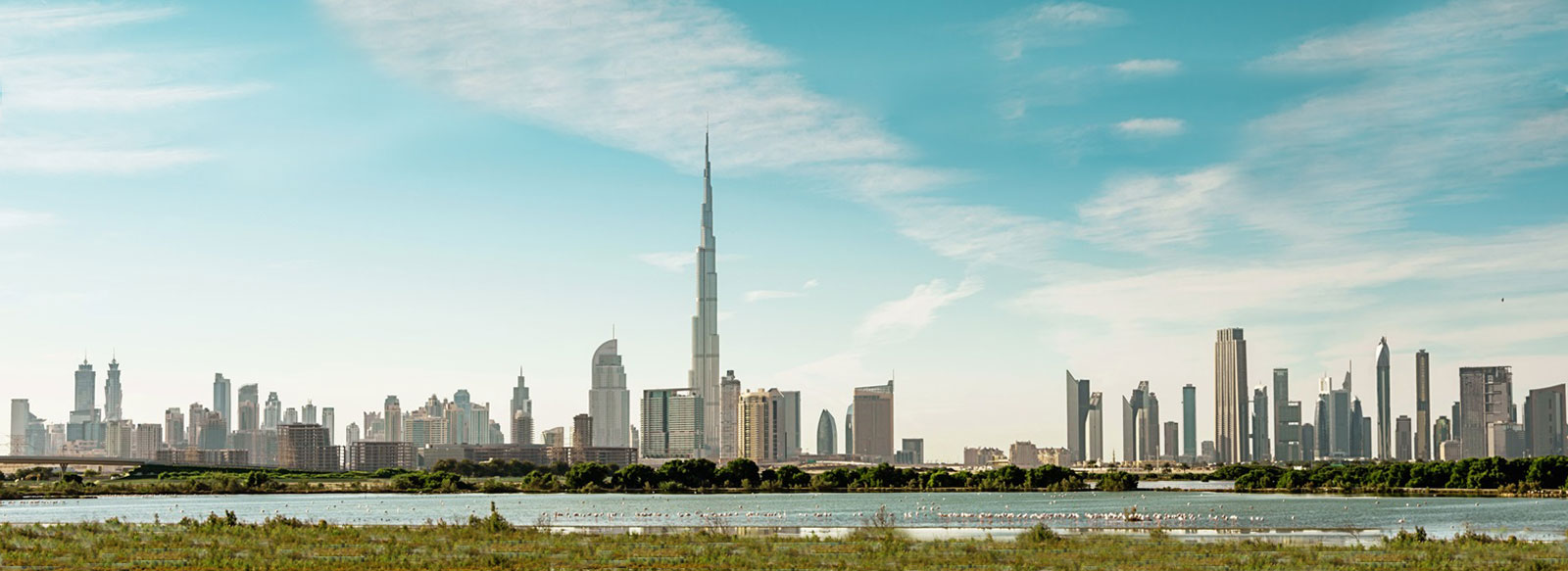 Emaar Platinum Line Offer