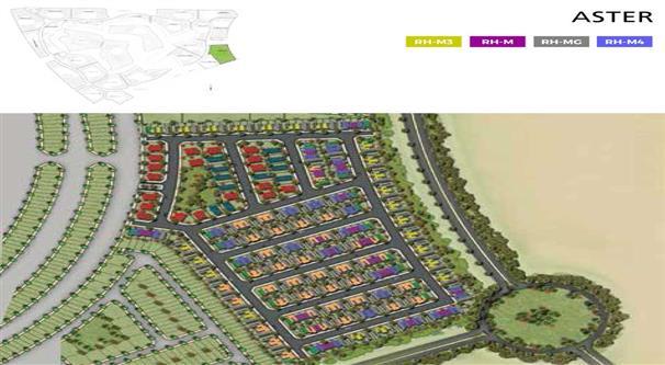 Aurum Villas :  Master Plan